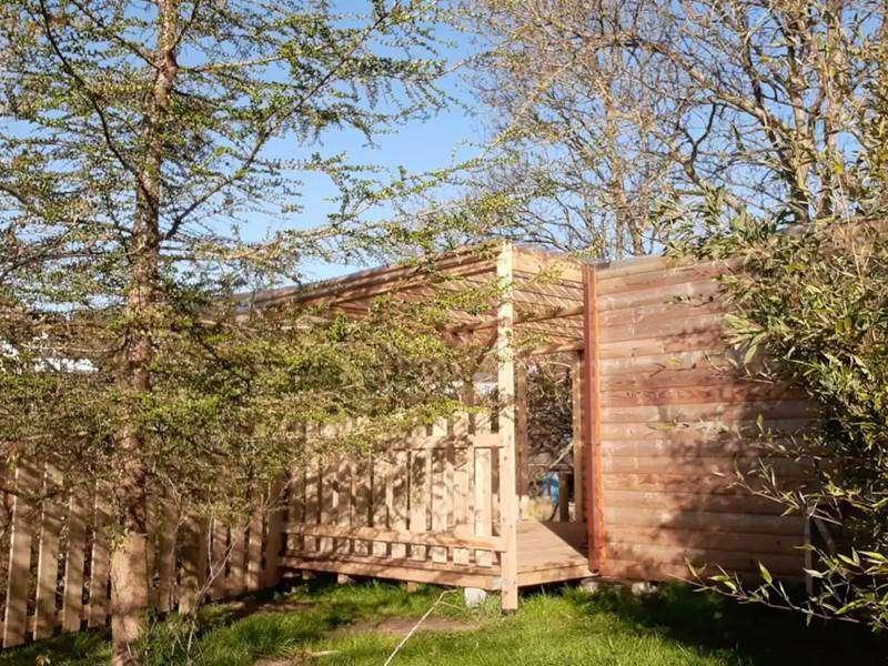 Swallows Log Cabin--21