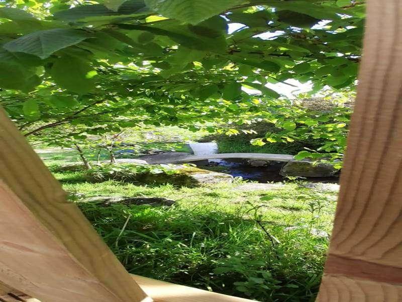 Swallows Log Cabin--8